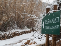 Camí d'entrada a Masia Spa Can Pascol Turisme Sostenible