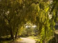 L'entorn de la casa rural Masia Can Pascol
