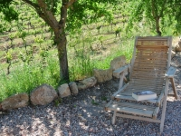 Turisme rural a Pontons.
